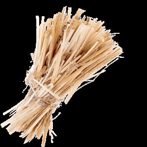 Seedlip Ingredient Hay