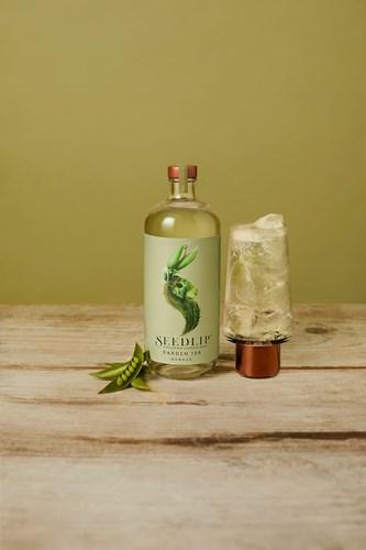 Herbal botanical drink Seedlip Garden 108 and Tonic