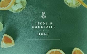 Seedlip at Home Image.jpg