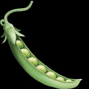 Seedlip Ingredient Peas
